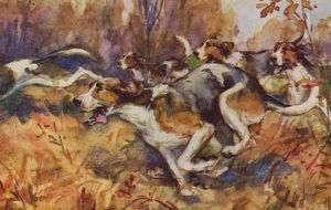 Foxhounds