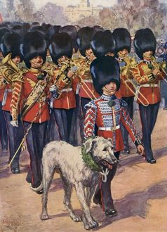 IRISH GUARDS & MASCOT