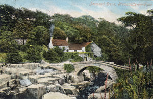 new images grenville collins collection/jesmond dene old mill newcastle on tyne england