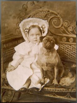 LITTLE GIRL AND PUG DOG
