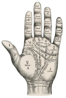 Palmistry map of the hand