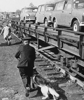 Policeman and dog by a railway line