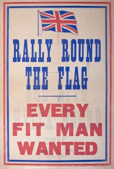 Poster, Rally Round the Flag