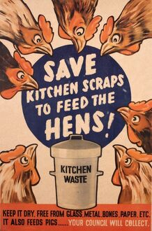 Poster: Save kitchen scraps to feed the hens!