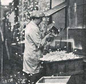 Royal Wedding 1934 - making rose petals