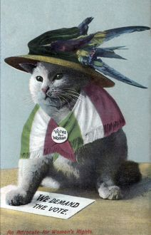 Suffragette Cat In Hat and Flag