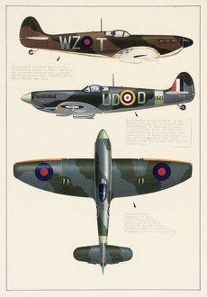 Supermarine Spitfire and Hawker Tempest aeroplanes
