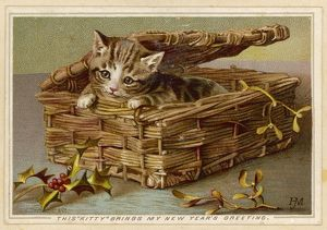 TABBY KITTEN IN BASKET