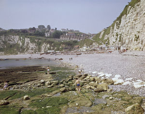 View along the shingle beach at Beer, East Devon