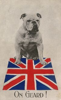 World War One Patriotic Postcard - Bulldog