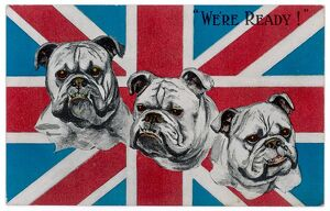 WW1 POSTCARD BULLDOGS
