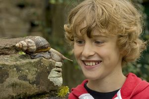 Boy Observing Giant African Land Snail