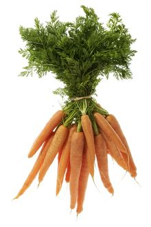 Carrots - tied in bunch, showing leaf tops