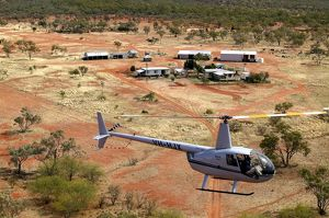 Cattle mustering - aerial photograph.by helicopter