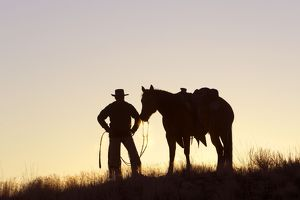 Cowboy - silhouette of cowboy with Quarter Horse at sunset