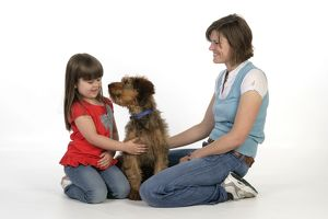 Dog - Puppy (Briard) interacting with a family