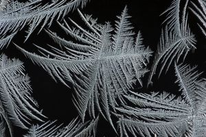 Frost Crystal - On car windscreen