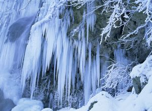 Frozen waterfall - icicles and frosty plants
