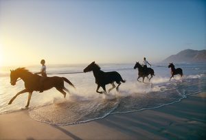 HORSES - with riders galloping along beach