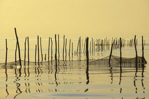 Italy - Venice Lagoon with fishing nets