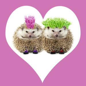 JD-20232-M2 Punk girl and boy Hedgehog - in pink heart shaped frame
