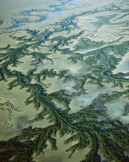 JPF-13812 Aerial - Roper River delta with saline flats and mangrove-lined dendritic