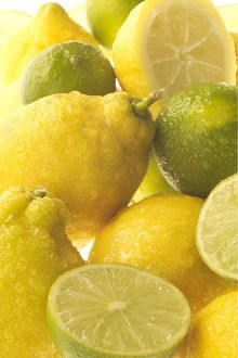Lemons & Limes - close-up