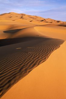 MOROCCO - The great sand dunes of the Erg Chebbi, the great sand dunes at Merzouga