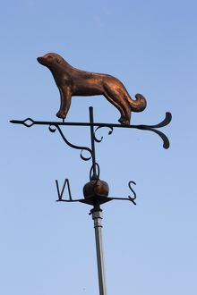 Pyrenean Mountain Dog / Great Pyrenees on a weather vane