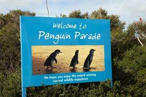 Sign advertising the world famous Penguin Parade - one of Vi