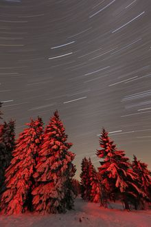 Star trails - in winter sky - Hoher Meissner National park