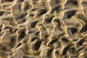 Structural forms in the sand of a dry riverbed