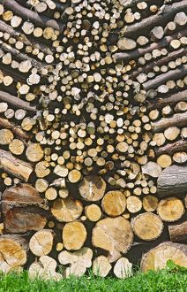 Symmetrically stacked pile of Logs for use as firewood