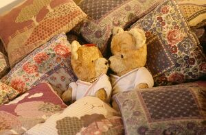 Teddy Bear - x2 teddies in bed