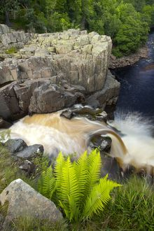 England, County Durham, High Force. The River Tees cascades down the High Force waterfall