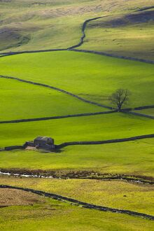 England, North Yorkshire, Yorkshire Dales National Park.