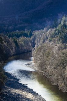 Scotland, Scottish Highlands, Killiecrankie.