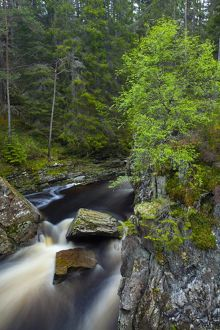 Scotland, Scottish Highlands, Laggan. Waterfalls on the River Pattack near Loch Laggan