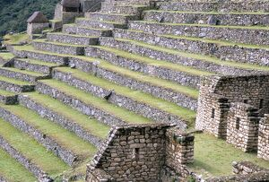 Agricultural terraces in ruins of Inca site