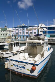 Boats at the Careenage, Bridgetown, Barbados, West Indies, Caribbean, Central America