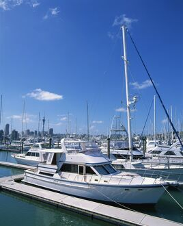 Boats in the Westhaven yacht marina in the city of Auckland