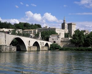Bridge and town, Avignon, Vaucluse, Provence, France, Europe