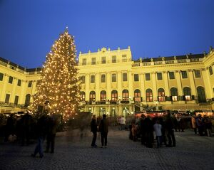 Christmas tree in front of Schonbrunn Palace at dusk, UNESCO World Heritage Site