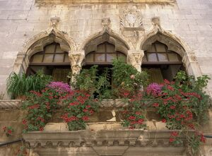 Close-up of ornate window arches with pots of oxalis and geraniums on the balcony at Porec