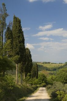Countryside near Montepulciano