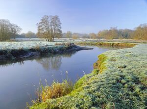 A frosty morning on Surrey Wildlife Trust's wetland reserve, The River Wey at Thundery Meadows
