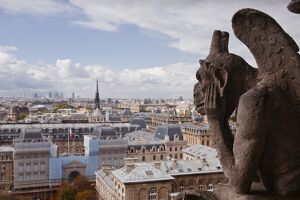 gargoyle stares notre dame paris cathedral paris