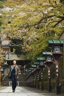 A girl looking at cherry blossom at Chionin Temple
