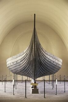 <b>Gokstad Ship</b><br>Selection of 12 items