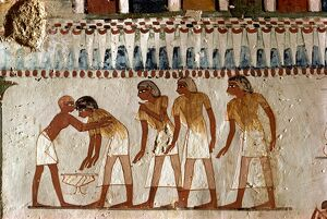 Harvesting scene from the 18th Dynasty land steward Sheikh Aba el Kurna
